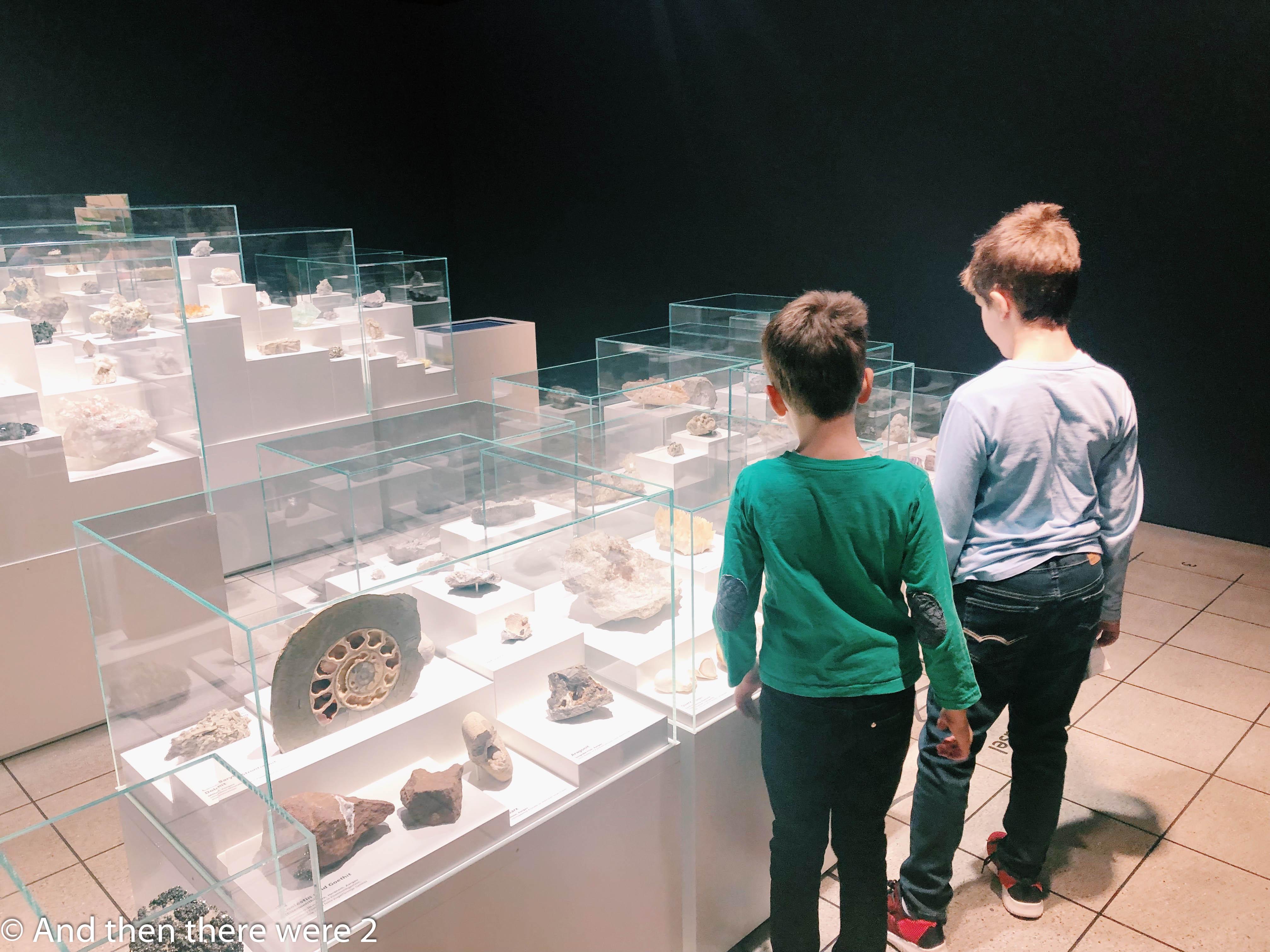 Natural History Museum Basel